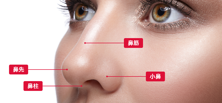 鼻を美しくする治療とは